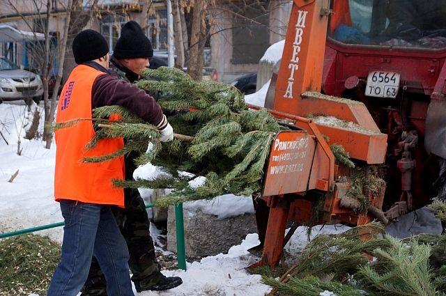 Утилизация новогодних елей