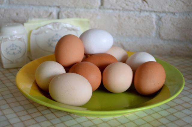 Как часто можно употреблять куриные яйца