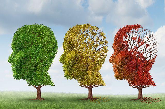 10 шагов к укреплению памяти