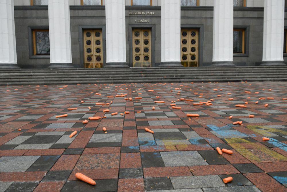 Акция протеста проходит перед зданием Верховной Рады. Участники разложили на площади морковки в насмешку над премьер-министром.