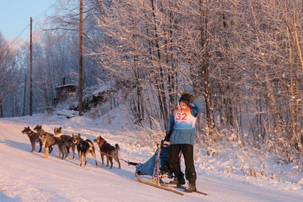 На Камчатке открыт зимний сезон ездового спорта.