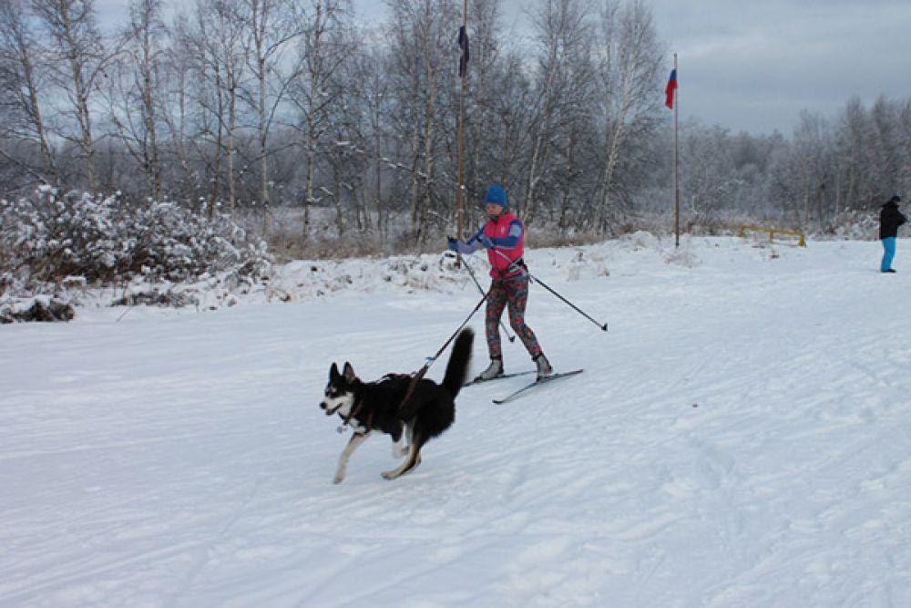 Скиджоринг прошёл среди мужчин и женщин в классе 1 собака на дистанции 8 километров.