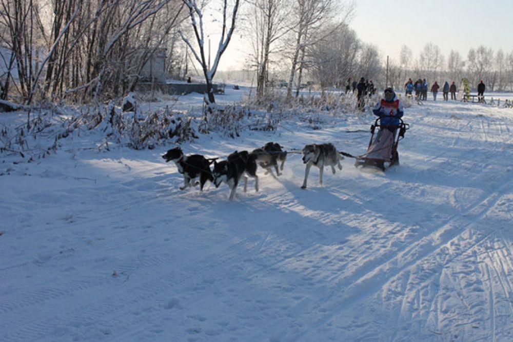 Снежно и морозно!