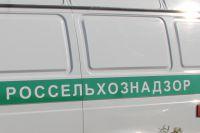 На водителя наложен административный штраф.