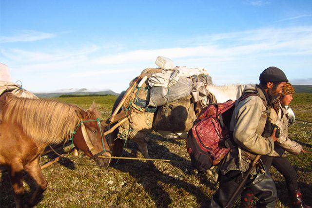 Две лошадки и жеребёнок.