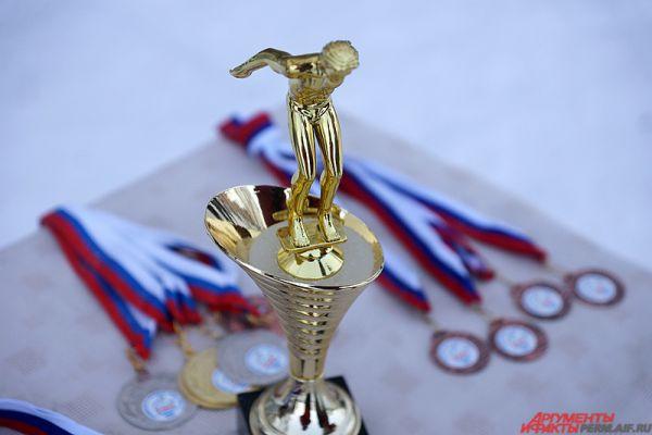 Самые быстрые «моржи» получили почетные медали и кубки.