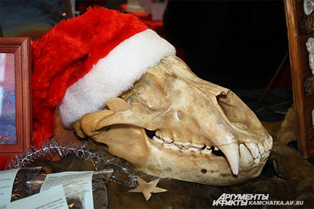 Череп медведя в рождественской шапочке. А что вы хотели?! На фестивале собрались творческие люди!