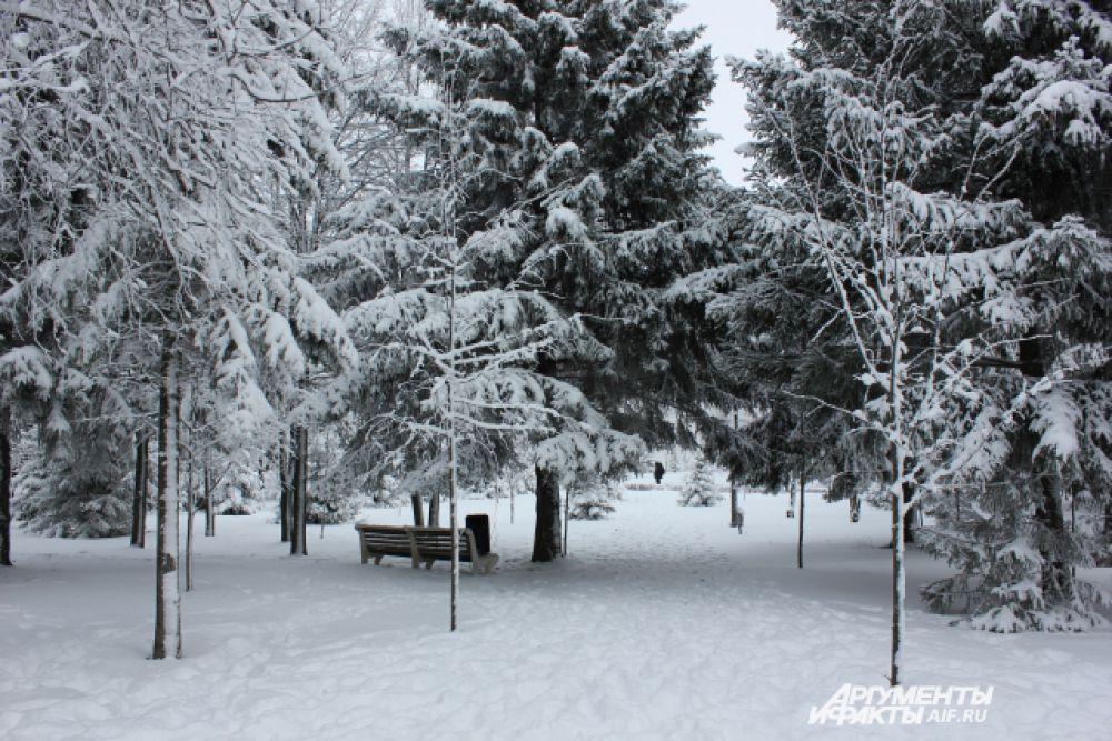 Путь к резиденции Кыш Бабая лежит через густой лес.