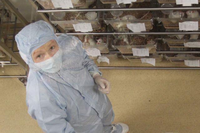 Учёные будут работать в особых условиях в биотехнопарке.