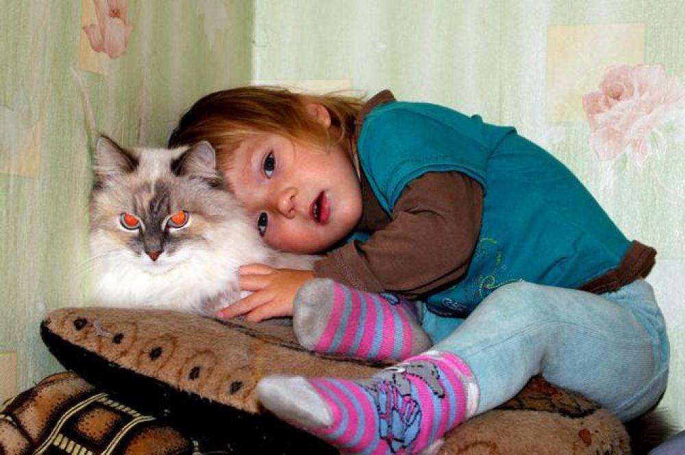 Кошка Маша с девочкой Сашей