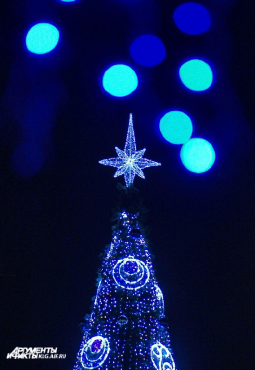 На макушку праздничного дерева надели полутораметровую «Полярную звезду».