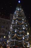 Праздничная елка в Ивано-Франковске