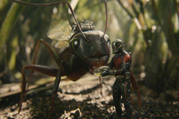 Человек-муравей. Супергеройский фильм, основанный на одноимённых комиксах. Сборы -  почти 50 миллионов долларов.