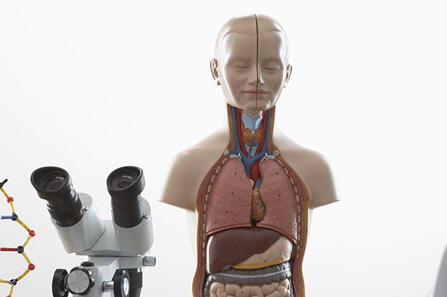 Симптомы щитовидной железы у женщин народное лечение