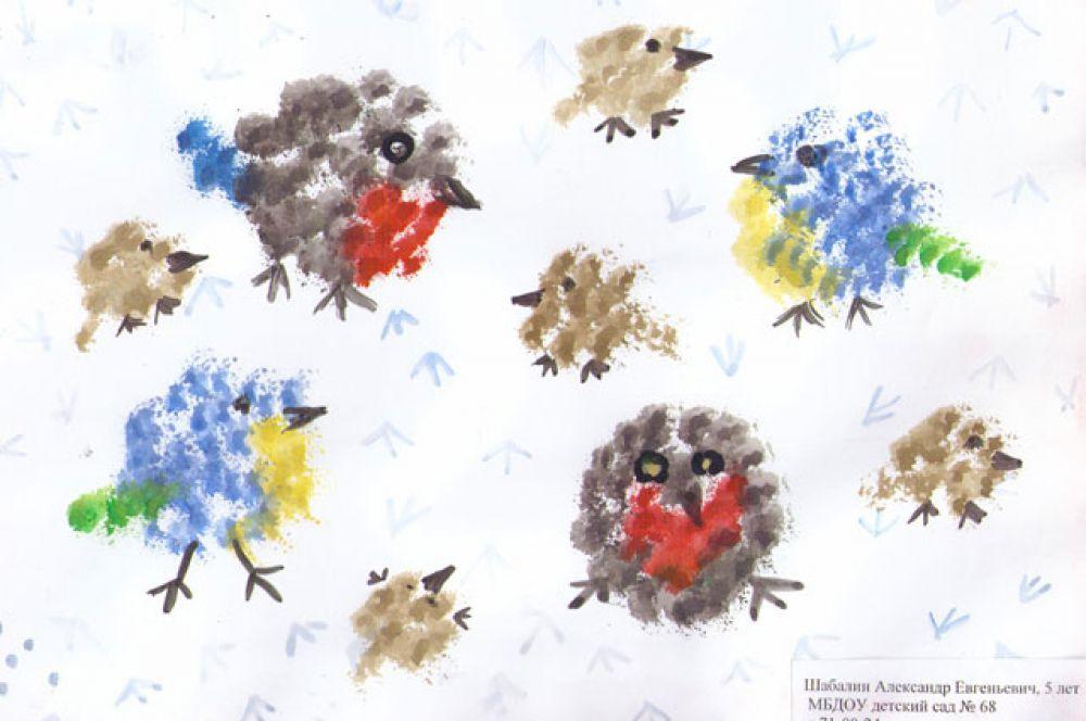 Участник №135. Шабалин Александр: Шарики пушистые скачут по дорожке, А в низу у шариков черненькие ножки. Скачут ярко-желтые, серые да синие, На снегу печатают тоненькие линии. Я в ладоши хлопну, и взлетят на ель Желтые синички, серый воробей.