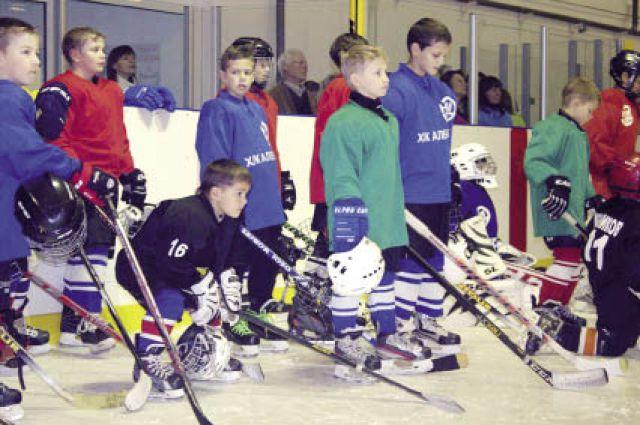 В Александровске единороссы поддерживают детскую хоккейную команду