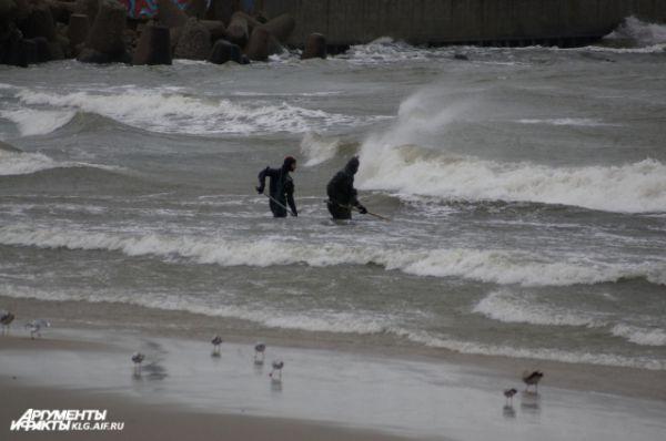 После того, как ветер чуть успокоится, на берег выходят десятки ловцов янтаря.