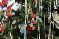 К середине января главный атрибут Нового года превратится в ненужный хлам