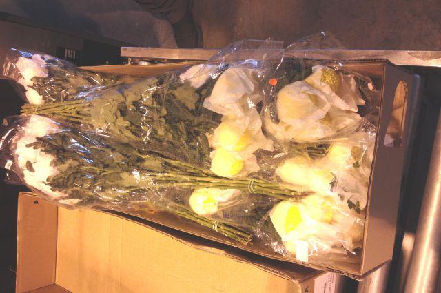 Зараженные хризантемы.