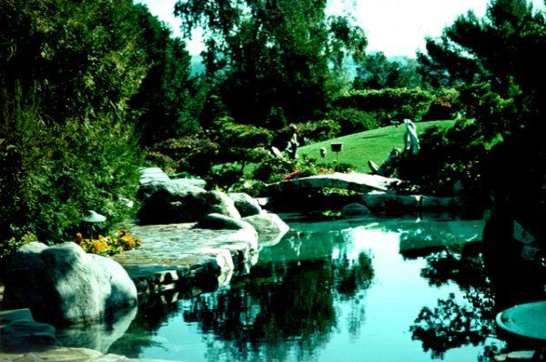 Бассейн в саду.