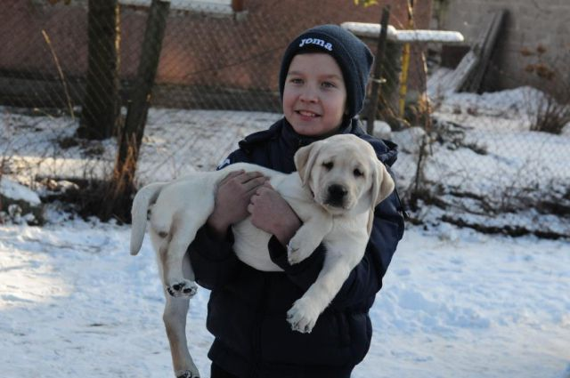 Юный собаковод Никита со щенком.
