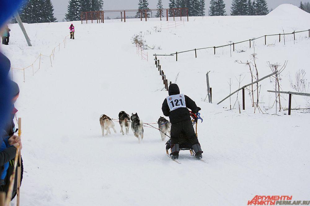 Участники проходили различные дистанции, начиная от 5 км и заканчивая 30 км.