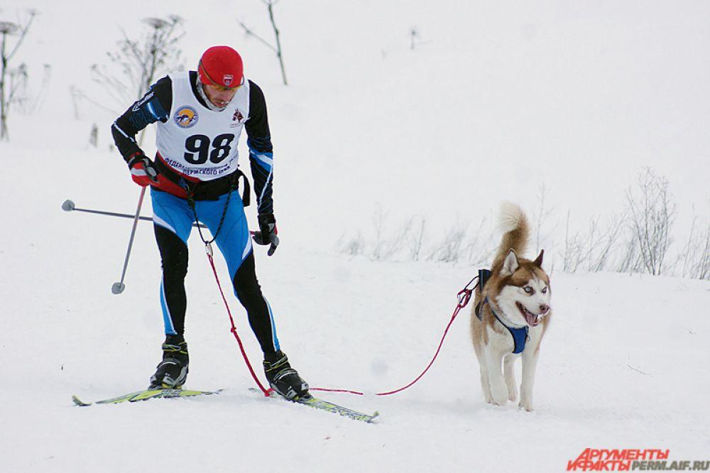 Кроме того, участники выходили на старт как вместе с одной и двумя собаками, так и упряжками по 12 животных.