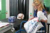 Почта России доставила омичам рекордное количество зарубежных посылок.
