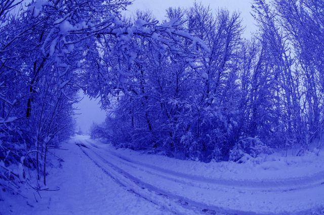 17:23 0 296  Одна из потерявшихся в лесу Соликамска школьниц получила обморожениеДевочка находится в больнице