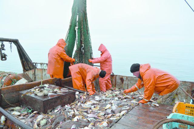 Рыбацкая профессия - одна из самых тяжёлых.