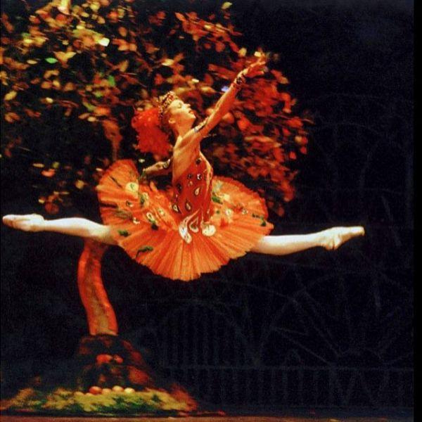 В 1994 году, ещё будучи студенткой 2 курса, Волочкова начала карьеру как ведущая балерина в труппе Мариинского театра. Она исполняла главные партии в таких постановках, как «Жизель», «Раймонда» и «Жар-птица».