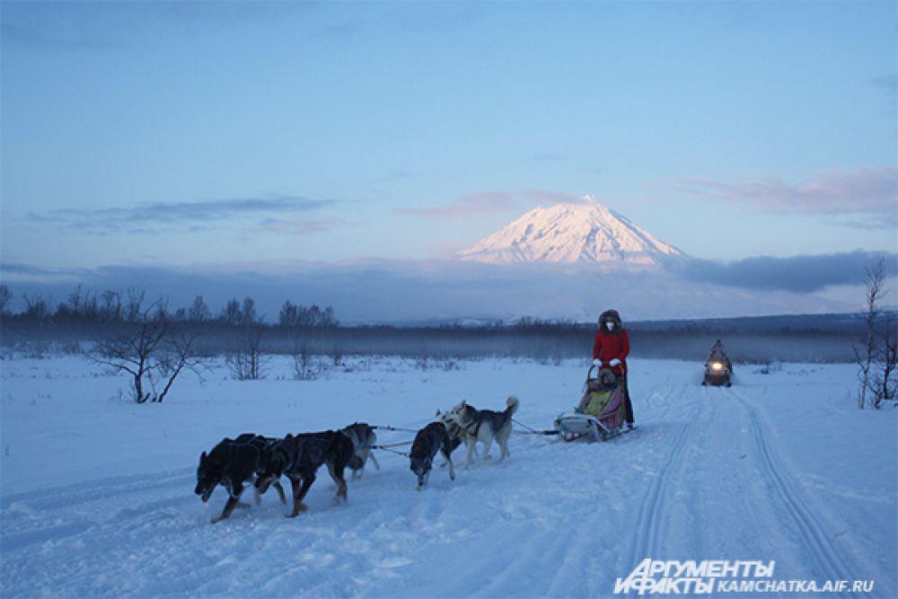 К радости от общения с собаками добавляется удивительный пейзаж.