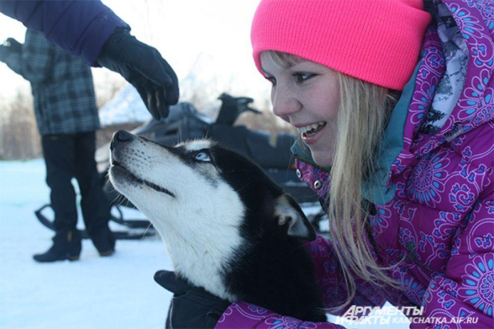 Общение с голубоглазыми собаками заряжает невероятной энергией!