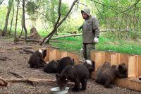 Питомник для медвежат.