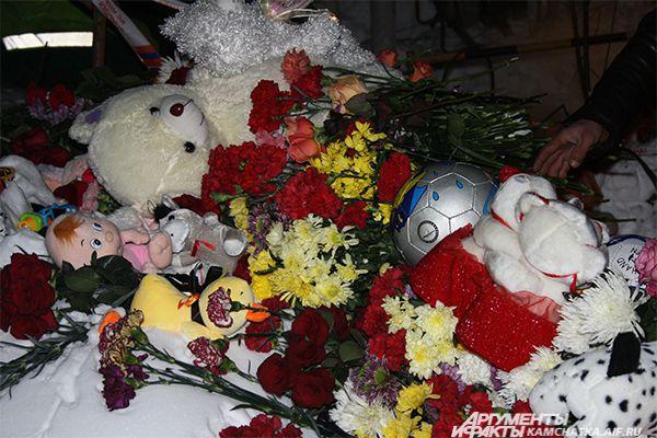 В Петропавловске-Камчатском 29 января объявлен траур.