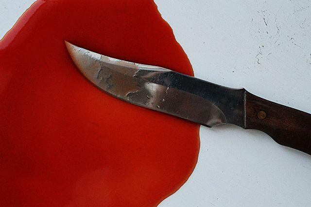 Мать ранила сына ножом во время пьяной драки.
