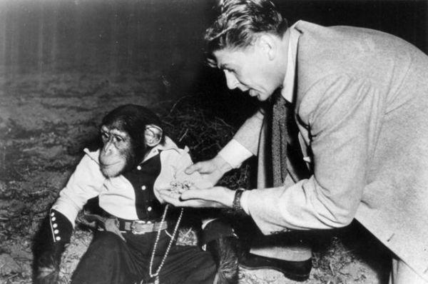 1951 год, в фильме «Бонзо пора спать».