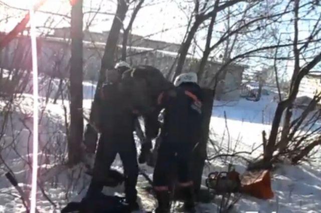 Бездомный застрял и звал на помощь