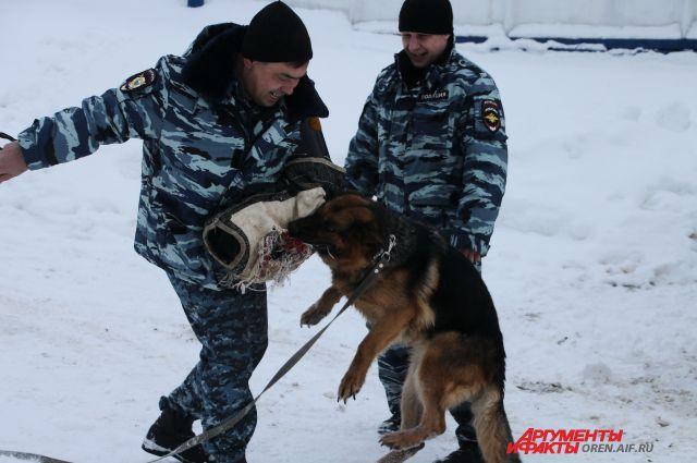 Не каждая собака может служить в полиции.