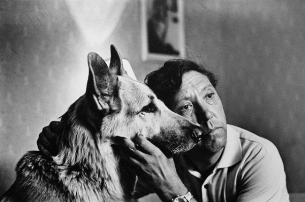 В 1964 году на экраны вышел фильм «Ко мне, Мухтар!»,  где рассказывается трогательная история дружбы рядового сотрудника милиции и его четвероногого друга, восточноевропейской овчарки. Самоотверженный пёс выручает хозяина в опаснейших ситуациях, которые готовит им нелёгкая служба.