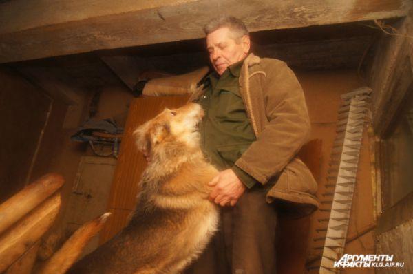 Истребление бродячих псов не только бесчеловечно, но и абсолютно бессмысленно, - убеждён волонтёр Владислав Ублинский.