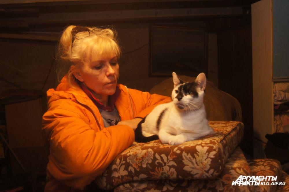 Нашлось в приюте место и кошкам.