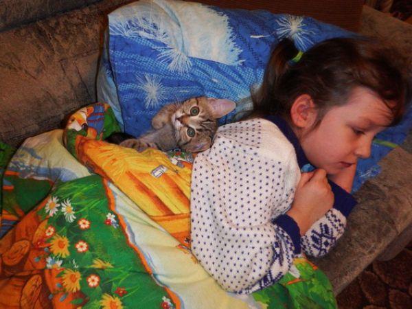 Киска Ириска — наш домашний любимец - 5