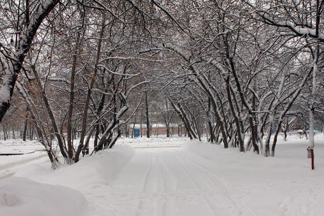 Всередине недели вцентре европейской части Российской Федерации похолодает