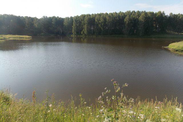 Неосвоенных земель в Кузбассе – 94 тыс. га.