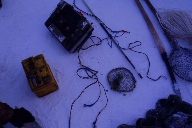 незаконная ловля рыбы алтайский край