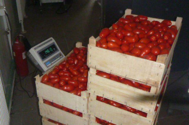 850 кг овощей и фруктов из Польши и Испании уничтожили под Калининградом.