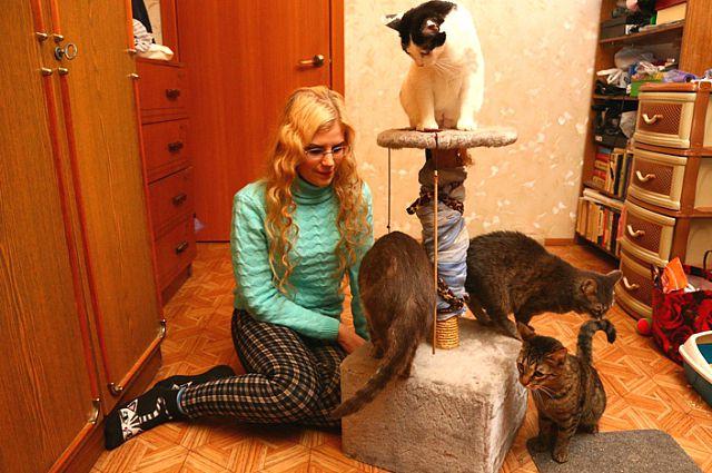 Устройство кошачьих судеб - дело затратное.