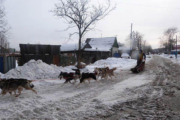 В этом году маршрут соревнований впервые был проложен через центральные улицы Елизова.