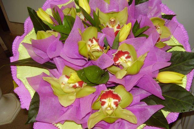 Какие цветы подарить женщине на 57 лет, магазин комнатные растения